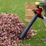 Leaf Mulcher: Advantages & Disadvantages
